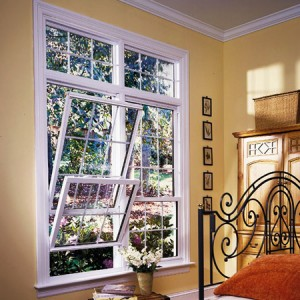 Best Replacement Windows Pitt County NC